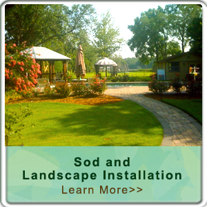 Jacksonville Landscape and Sod